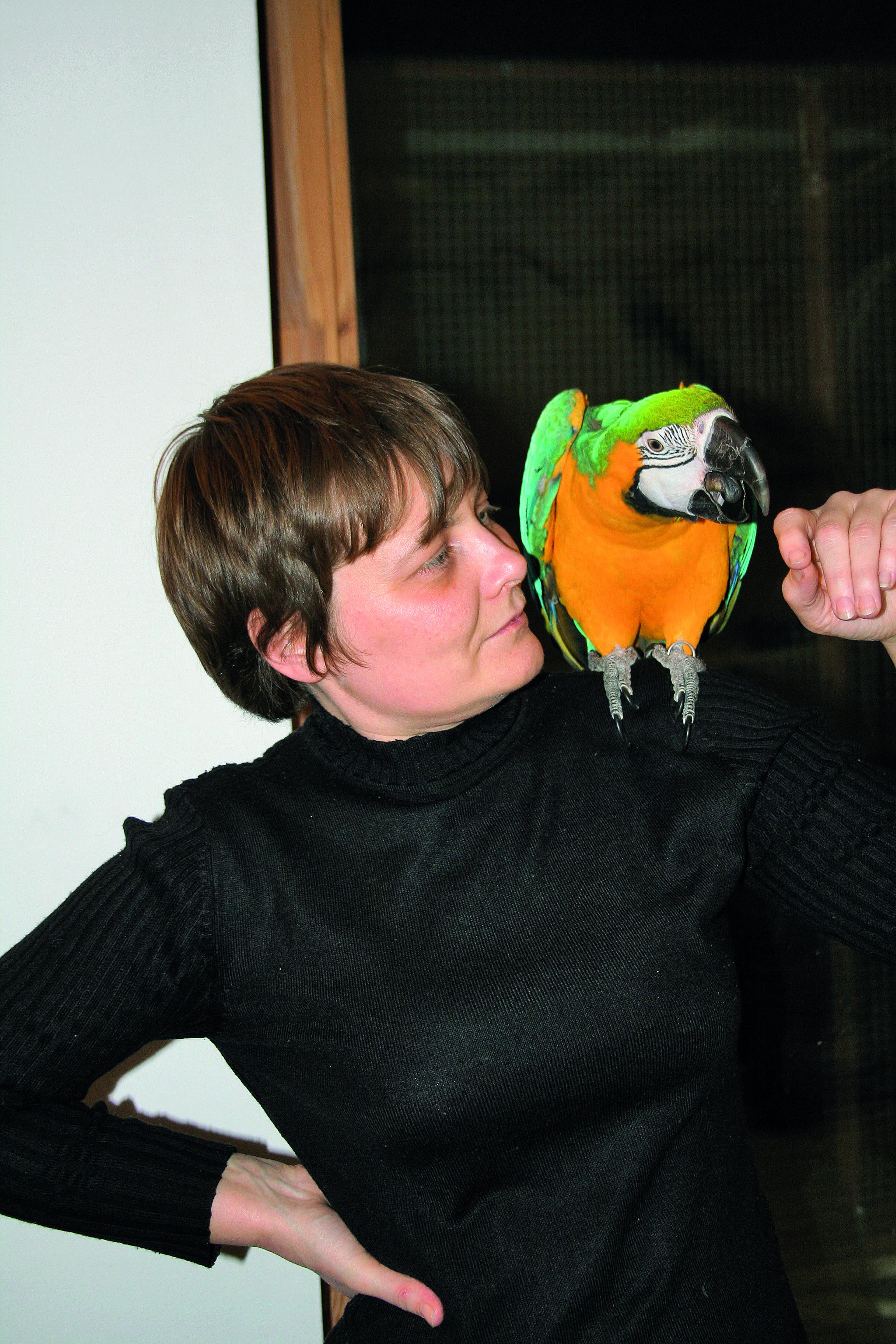 Uratowana z papugarni