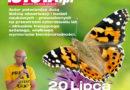 """Opowieści o wymierających gatunkach – książka """"Motyle"""" Josefa H. Reichholfa"""