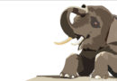 Słoń wieczny tułacz